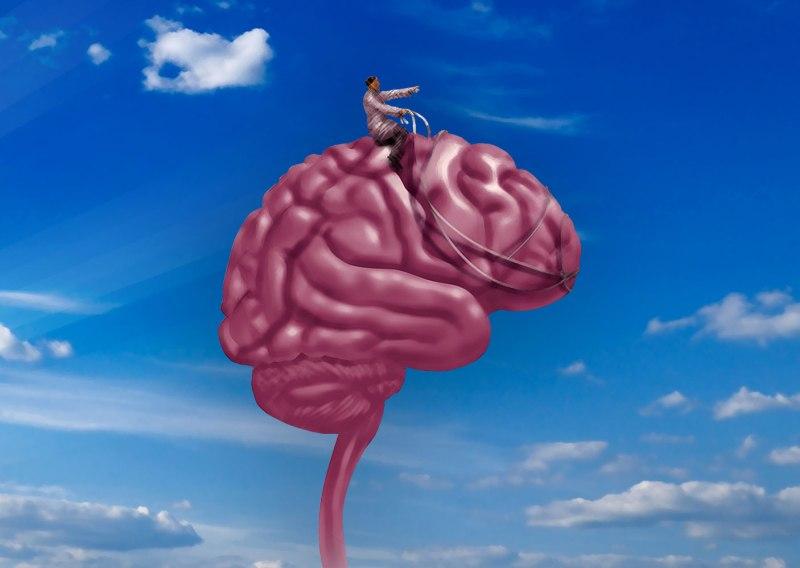 Dominio-mente-brain-harness-03