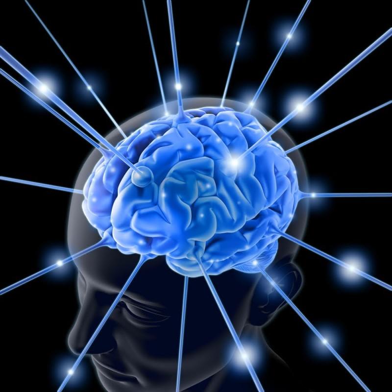 Cervello neurofisiologia meditazione