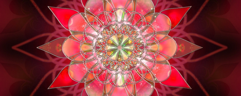 fractal_pattern_flower_petals_form_46466_2560x1024